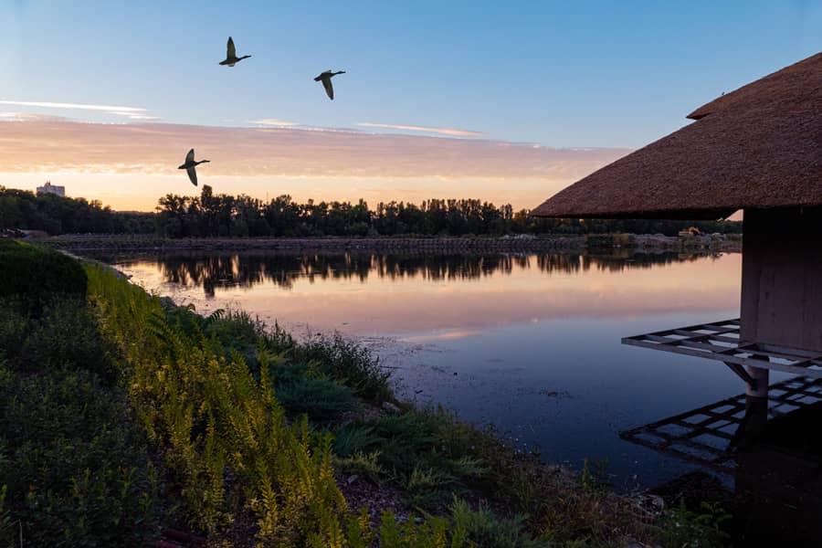 Днепровские закаты-2020. Часть 2